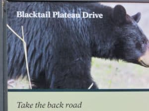 sign for Blacktail Plateau Drive