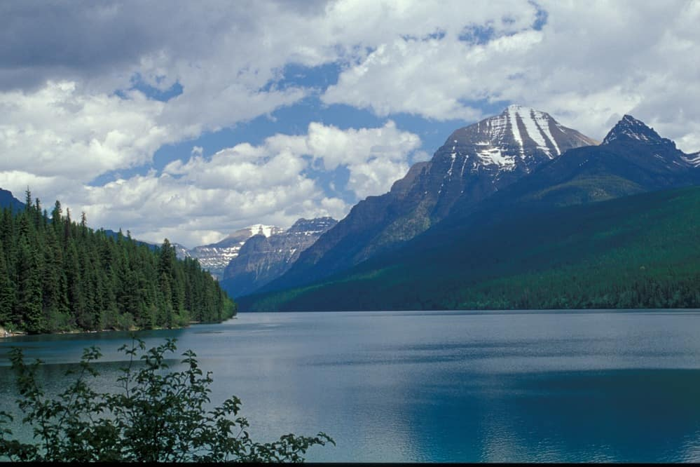 Bowman Lake Rustic Campground in Glacier National Park