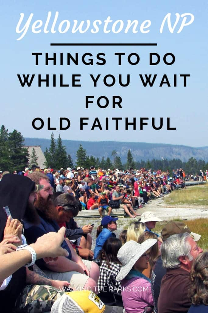 There are so many things to do in Yellowstone National Park, especially in the Old Faithful Area. Don't miss a thing, check out this guide to the Old Faithful area for your Yellowstone Itinerary. #WalkingTheParks #YellowstoneNationalPark #OldFaithfulGeyser