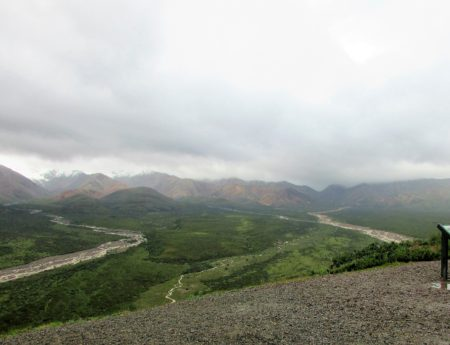 9 Things to do in Denali National Park in the Rain… And it Will Rain!