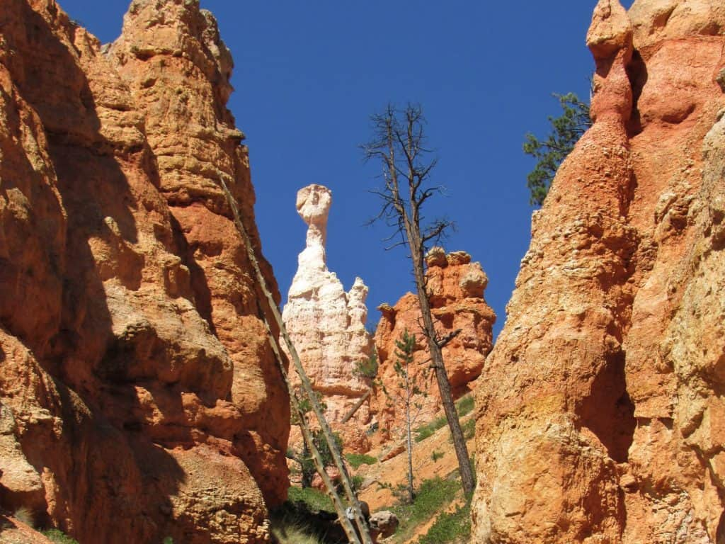 Queen Victoria in Queen's Garden Bryce Canyon National Park