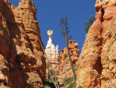 Hiking the Unforgettable Queens Garden and Navajo Loop Trail in Bryce Canyon National Park