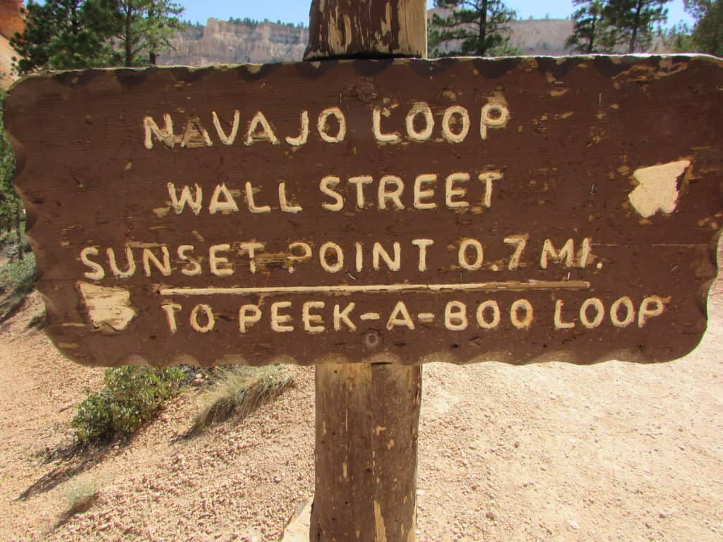 Brown Sign pointing to Wall Street in Navajo Loop