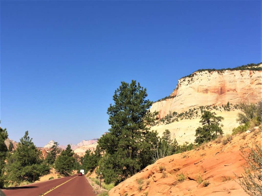 Road into Zion National Park with bluffs and slick rock on the side.