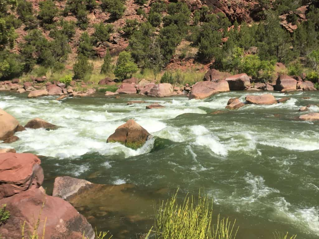 Rapids in Lodore Canyon