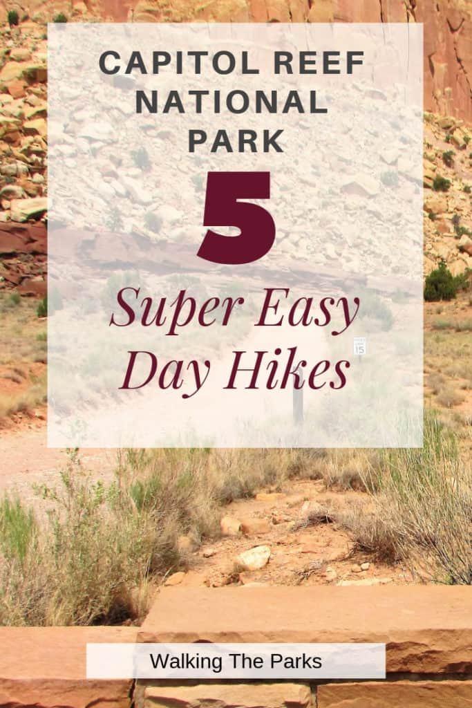 Hiking in Capitol Reef National Park is quite the adventure! Check out these 5 Super Easy Day Hikes to add to your trip itinerary. #WalkingTheParks #CapitolReefNationalPark #CapitolReefHiking