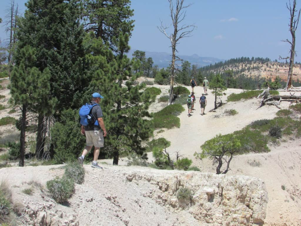 Bryce Canyon Rim Trail for your Bryce Canyon Itinerary #WalkingTheParks