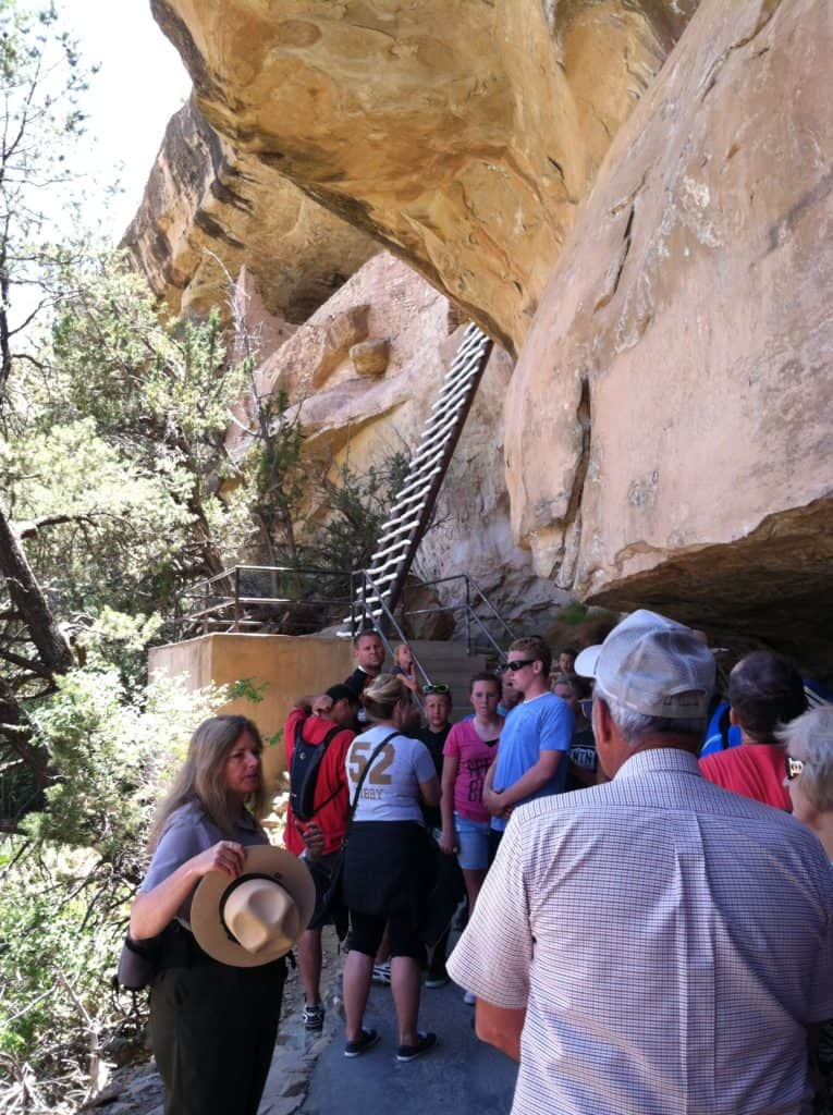 Ladder out of Mesa Verde Cliff House