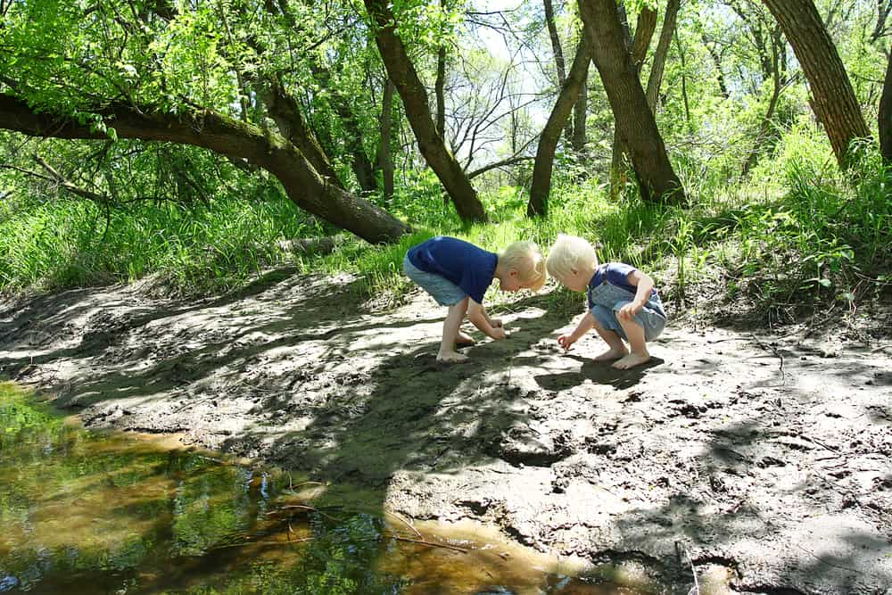 Boys exploring water while on family hike