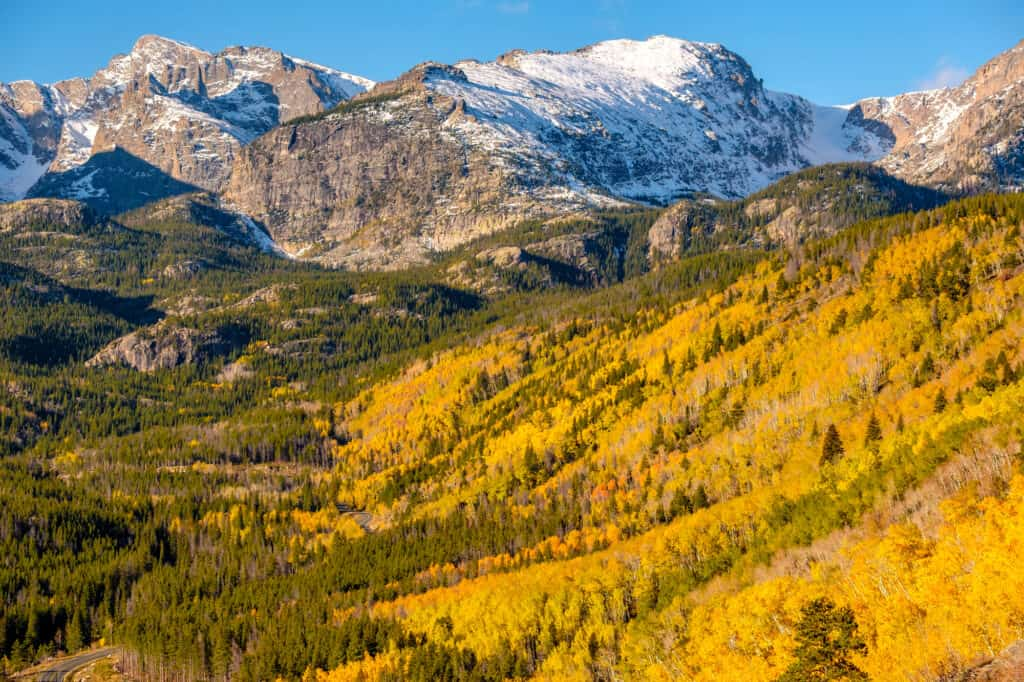 Fall colors of Aspen in Rocky Mountain National Park