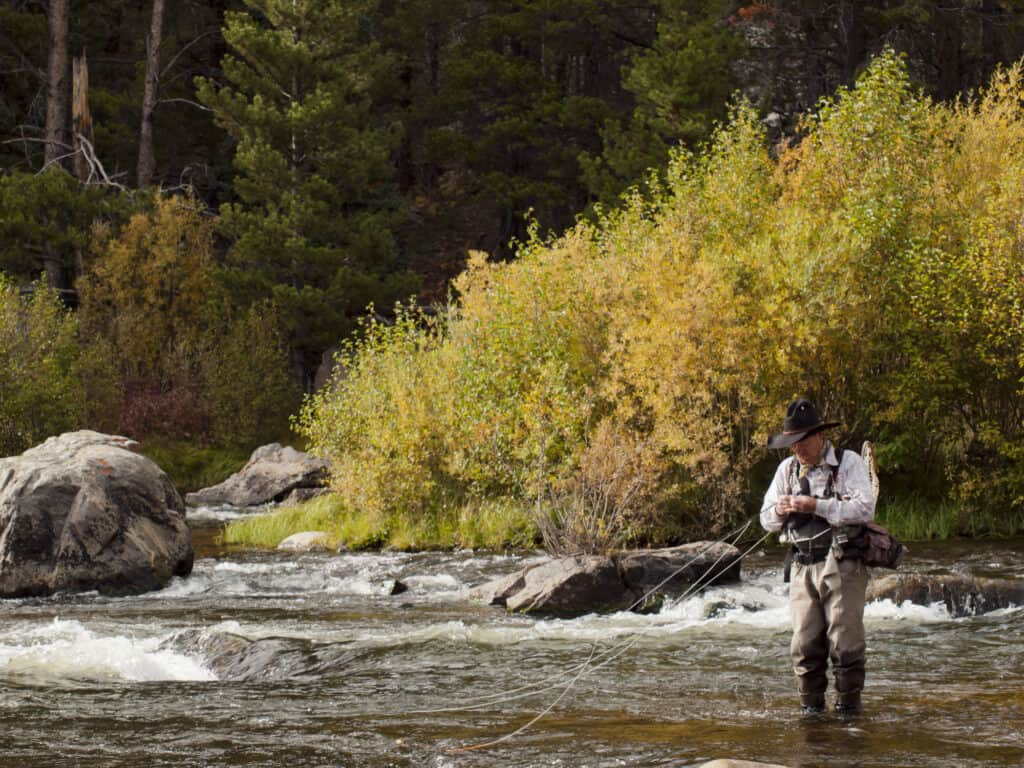 Fly fishing in fall in Rocky mountain national park