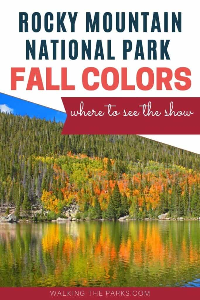 Fall colors in Rocky Mountain National Park, aspen reflect off the bear lake. Where to see the best fall color in the park!